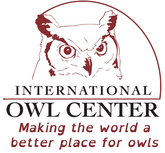 Visit Bluff Country - International Owl Center